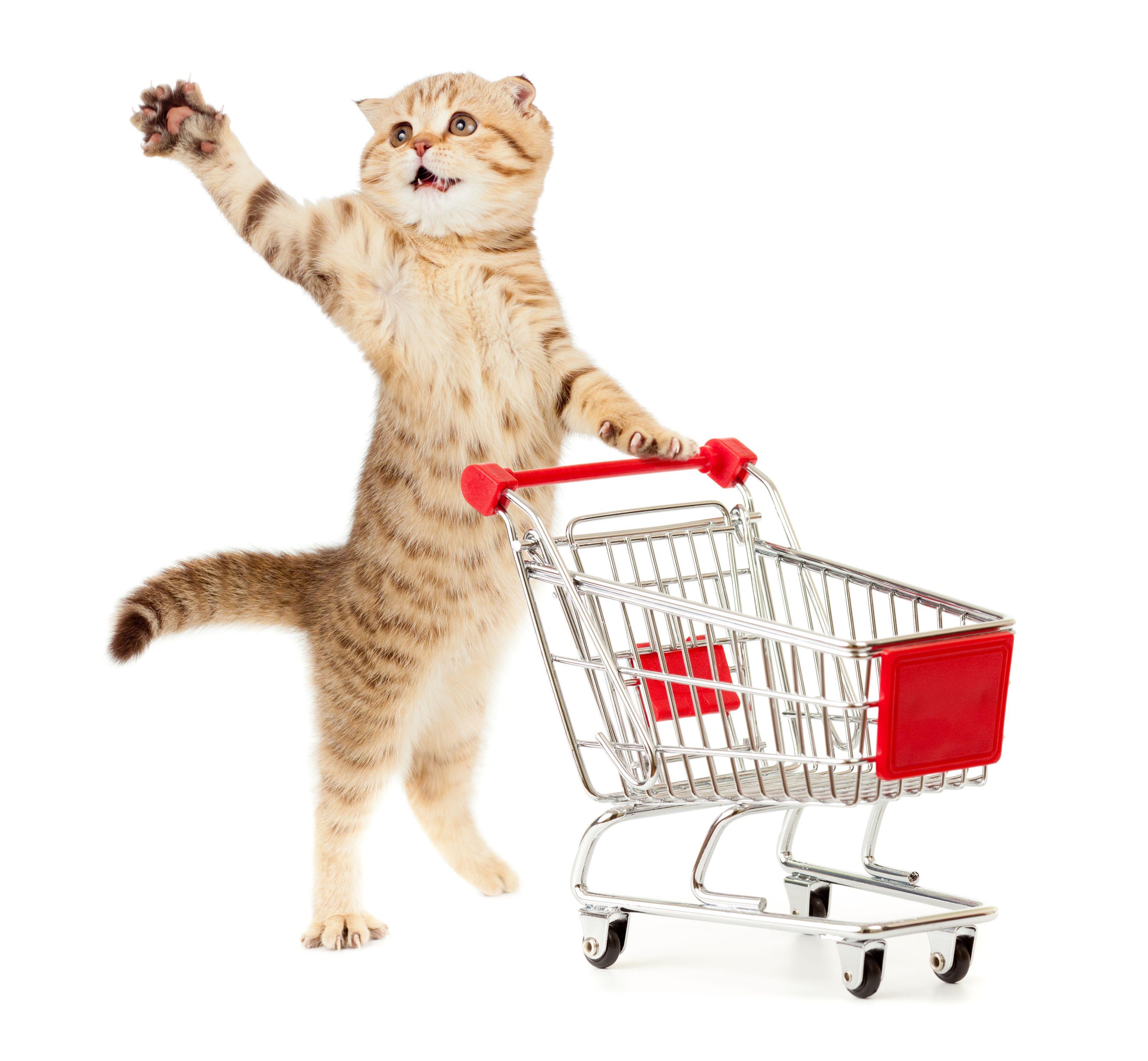 ¿A dónde comprar los productos?